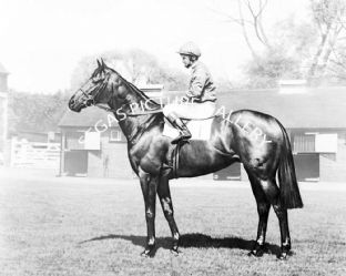 Brigadier Gerard with Joe Mercer (b607-01b)